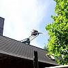 MatterhornBlitz 100 0890